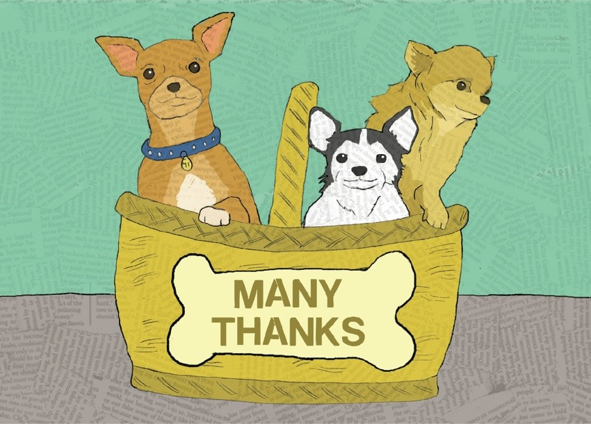 The Found Many Thanks Dogs