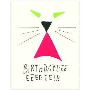 Cat Birthdayeee Eeeeee!!!